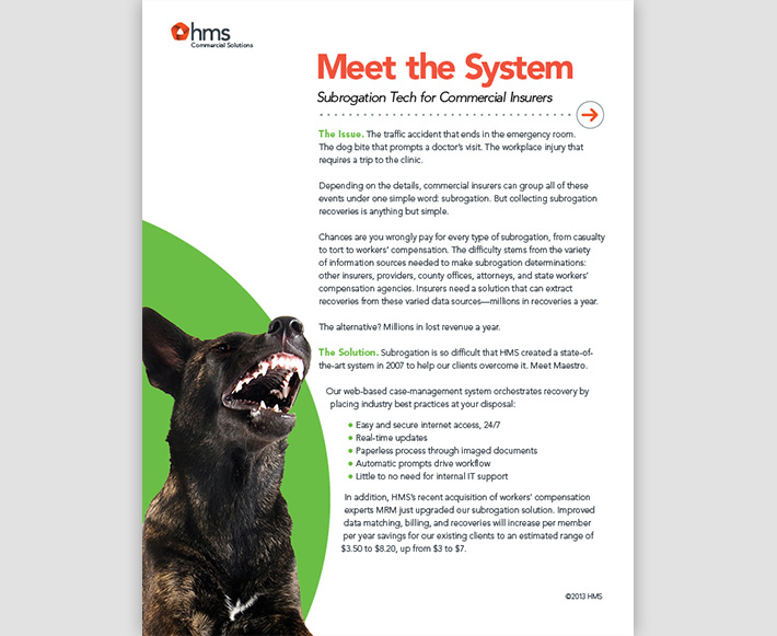 White paper designed by Joel Mertz for HMS. The title reads, Meet the System, Subrogation Tech for Commercial Insurers. There is a photo of a mean looking dog.